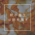 沖縄 よもぎ蒸し_yururi-